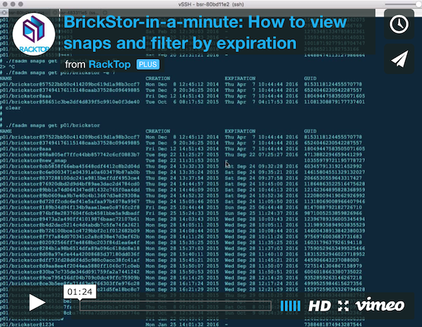 BrickStor-in-a-minute: How to view snaps and filter by expiration