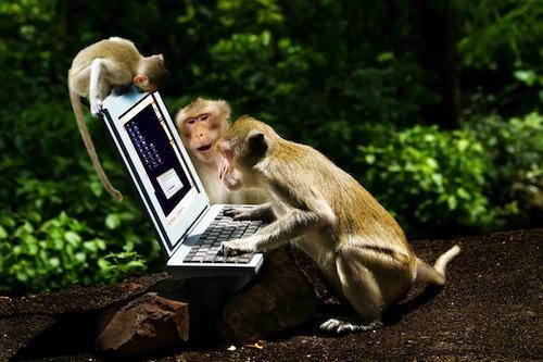 monkey-biz